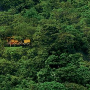 Coorg Kabini Wayand Tour – 07nights 08days