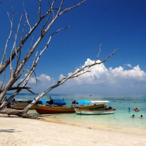 Andaman Island Tour – 05nights 06days