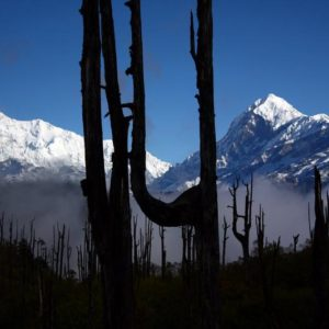 Sound Of Silence – Sikkim & West Bengal Tour – 10nights 11days