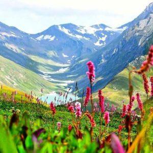 Valley of Flower Trek – 06nights 07days